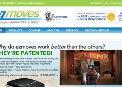 EZMOVES / WEB